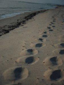 Angela Barra, foto stampata su canvas,